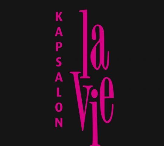 Kapsalon La Vie